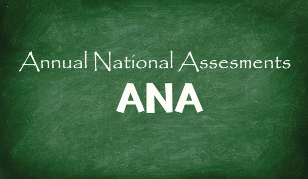 Annual National Assesments (ANA)
